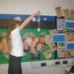 Investigating parachutes